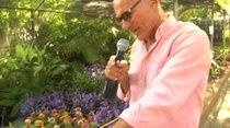 Douglas nos muestra los jardines del Festival de las Flores en Aibonito...note lo pierdas