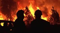 Portugal lucha por controlar incendios forestales