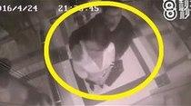 Mujer golpea a hombre que la acosa en ascensor