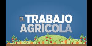 Puerto Rico en Datos: El trabajo agrícola