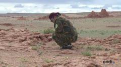 Mongolia intenta recuperar fósiles de dinosaurios robados