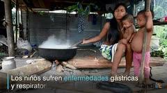 El hambre y el miedo: protagonistas en la selva colombiana