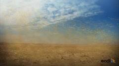 Los secretos que esconde el polvo del Sahara