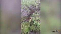 Inundación repentina deja varios muertos en Arizona