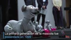 Sony revive su perro robot