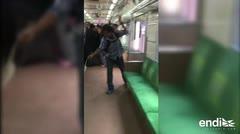 """""""Héroe"""" viral mata una serpiente con sus manos en un tren"""