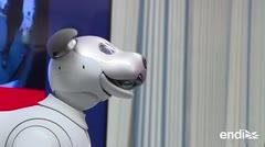 Viejo perro, nuevos trucos: Sony lanza su perro robot