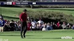 Fanático distrae a Tiger Woods y le daña una jugada