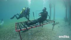 Un buzo vivió 24 horas bajo el agua en el Mar Rojo