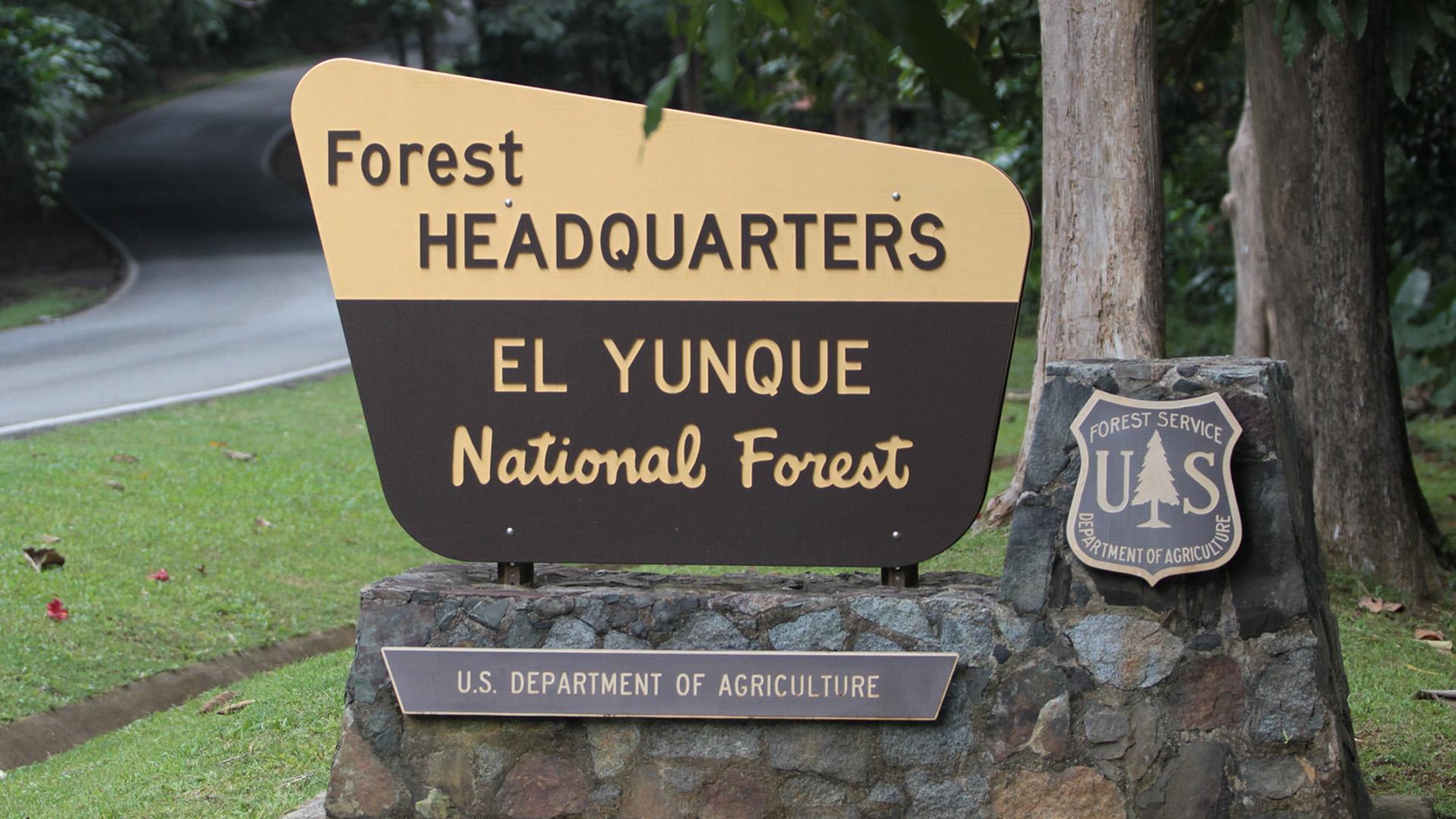 El maravilloso encanto natural de El Yunque