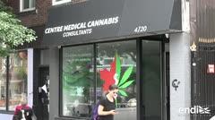 Parlamento canadiense aprueba proyecto para legalizar marihuana