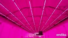 Monsanto abre sus puertas y cuenta el secreto de su polémica luz rosada