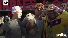 Los fanáticos de LeBron James están de fiesta