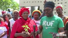 Justicia de Sudáfrica legaliza el consumo privado de cannabis