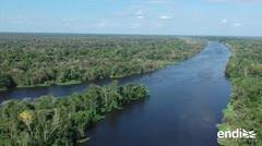 Explosiva deforestación por culpa de los criminales en Brasil