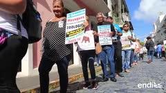 Mayagüezanos exigen el detente de la extradición de la elefanta Mundi
