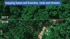 Imágenes de la NASA muestran estragos del huracán María a los bosques