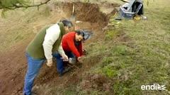 Descubren fósil de ciervo prehistórico en Argentina