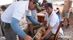 Introducen iguanas en la isla de Galápagos