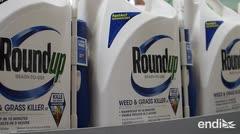 Bayer se hunde en la bolsa por un herbicida declarado cancerígeno