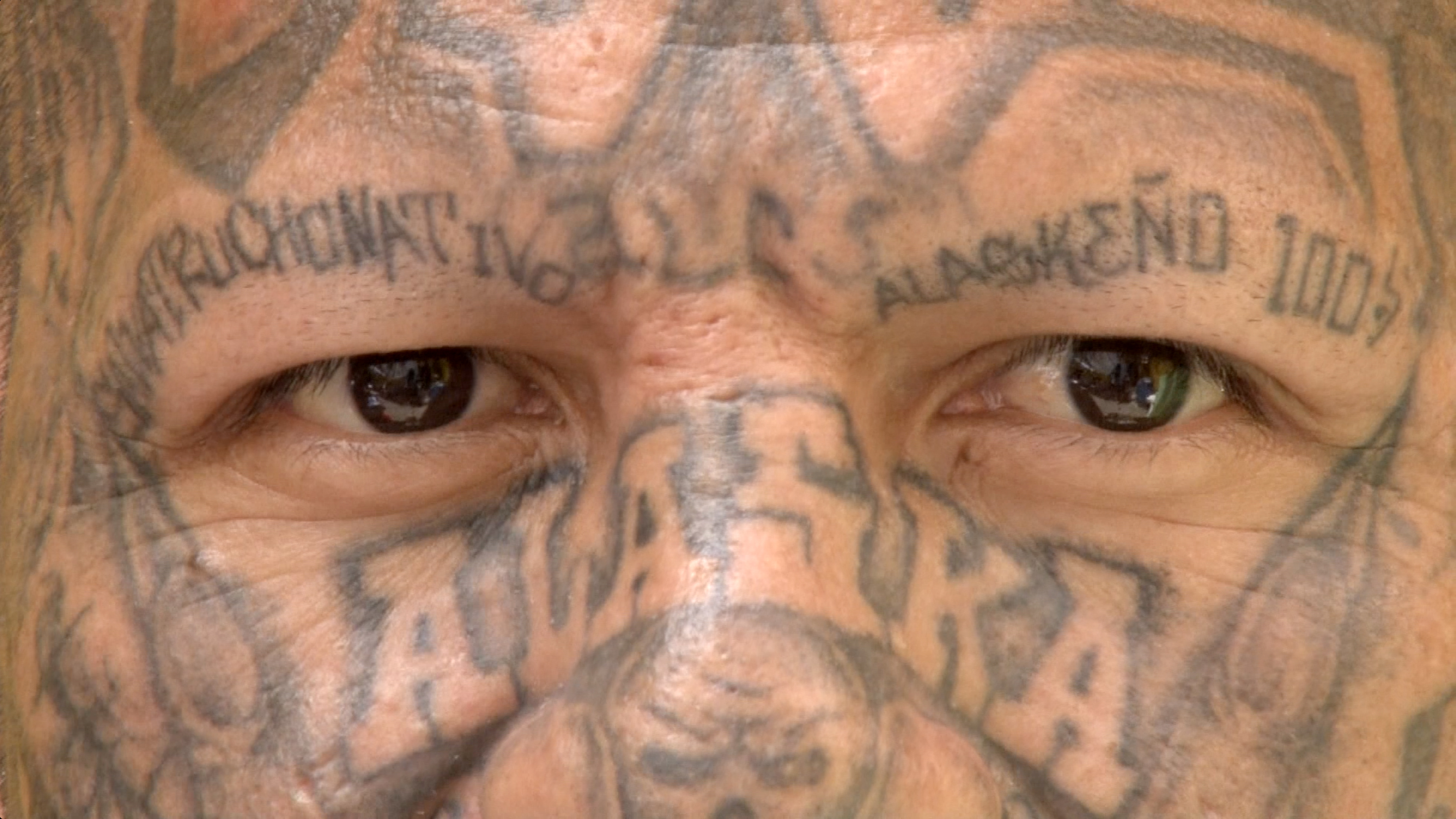 """Son pandilleros, se tatúan el rostro y niegan el sello de """"animales"""""""