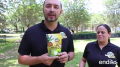 La harina de plátano llega a Florida