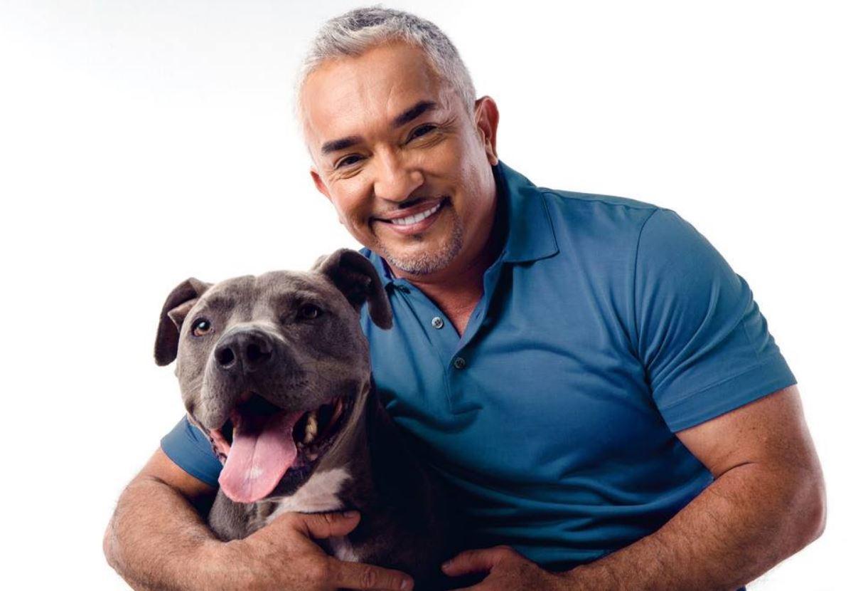 César Millán te da técnicas para prevenir conductas erróneas en tu perro