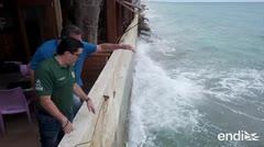 Miembros de la Cámara de Representantes ven los efectos de la erosión en Ocean Park
