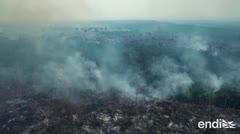 Fuerzas Armadas de Brasil combaten los incendios