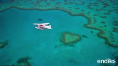 """""""Muy malas"""" las condiciones de la Gran Barrera de Coral"""