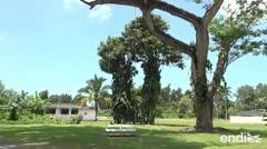 Alternativa turística en Arecibo para hospedarse y disfrutar la naturaleza