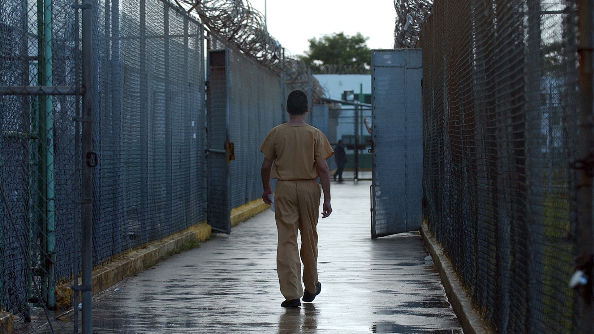 Confirman que se realizan los registros de droga en las cárceles del país