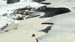 Conversaciones con Luis A. Ferré Rangel: Al rescate de las playas de Puerto Rico