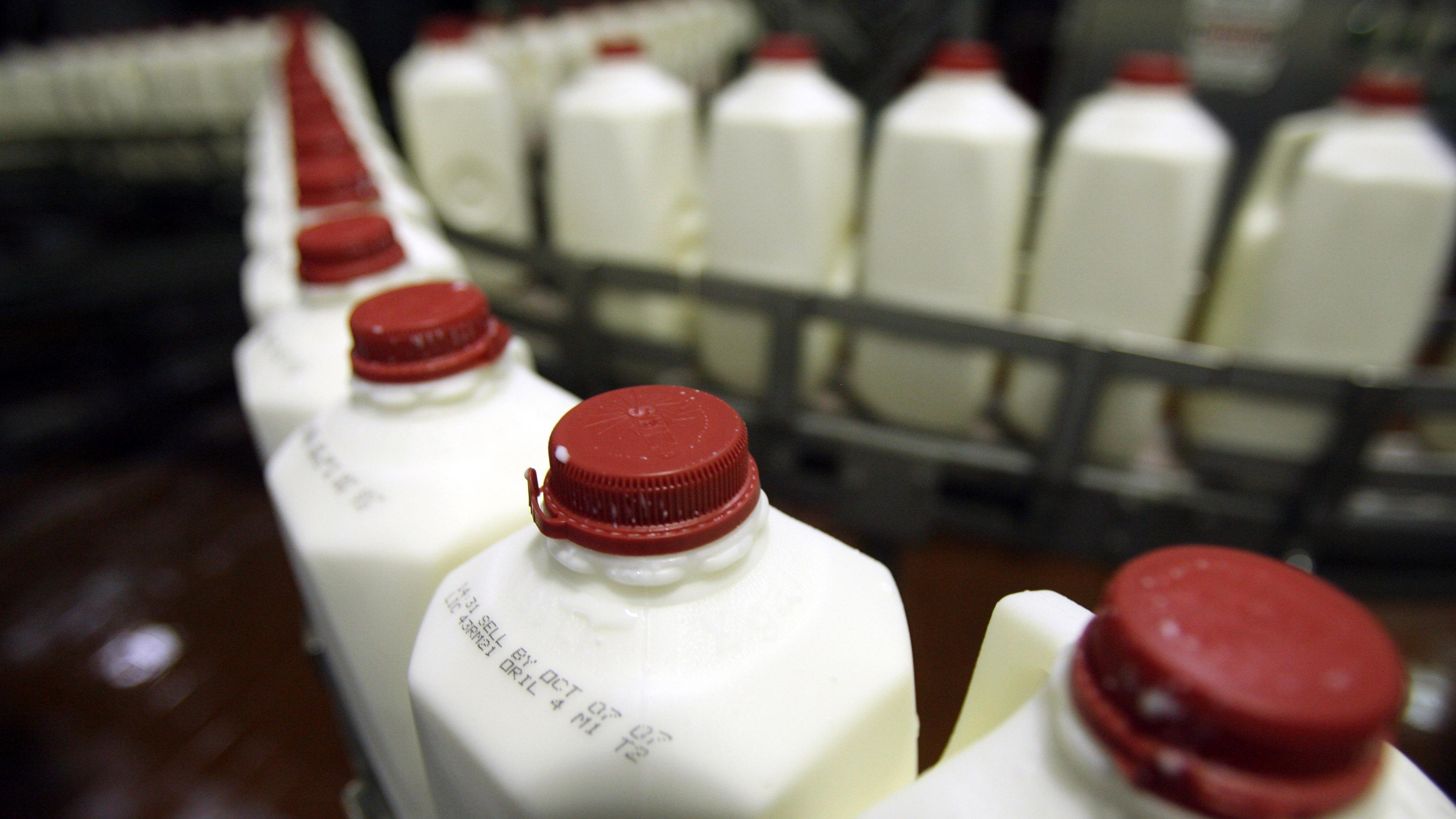 ¿Cómo los boricuas consumen leche?