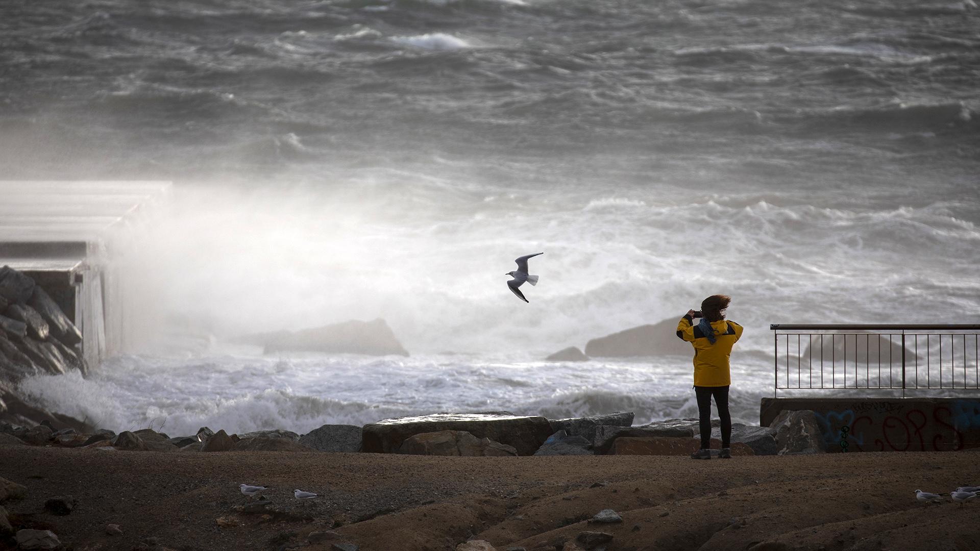 Estudio revela terrible realidad de los océanos en el mundo
