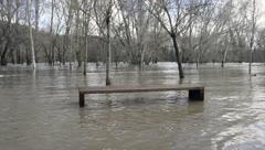 Desastroso golpe de la tormenta Gloria en España