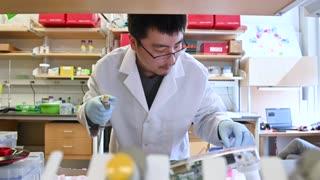 Vacuna experimental contra COVID-19 da resultados alentadores