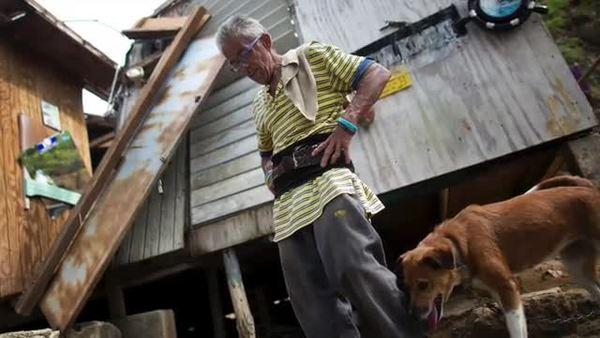 Perdió su casa, pero no abandonará a sus cuatro perros