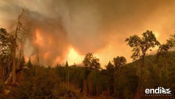 Incendio forestal amenaza el parque Yosemite en California