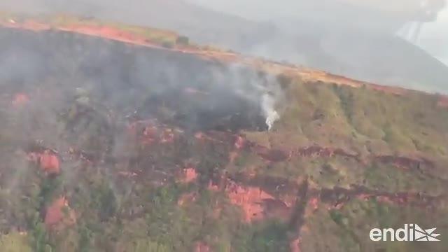La Amazonía está en llamas y las redes sociales hierven con denuncias