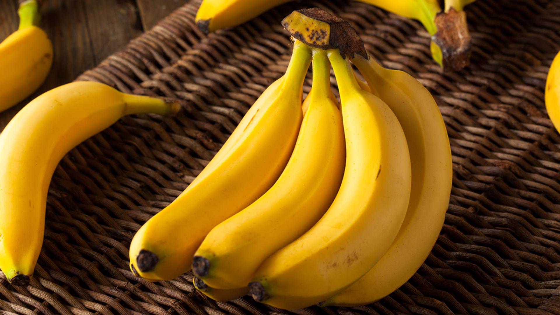 """Advertencia sobre el hongo de guineos y plátanos: """"Sería peor que el huracán María"""""""