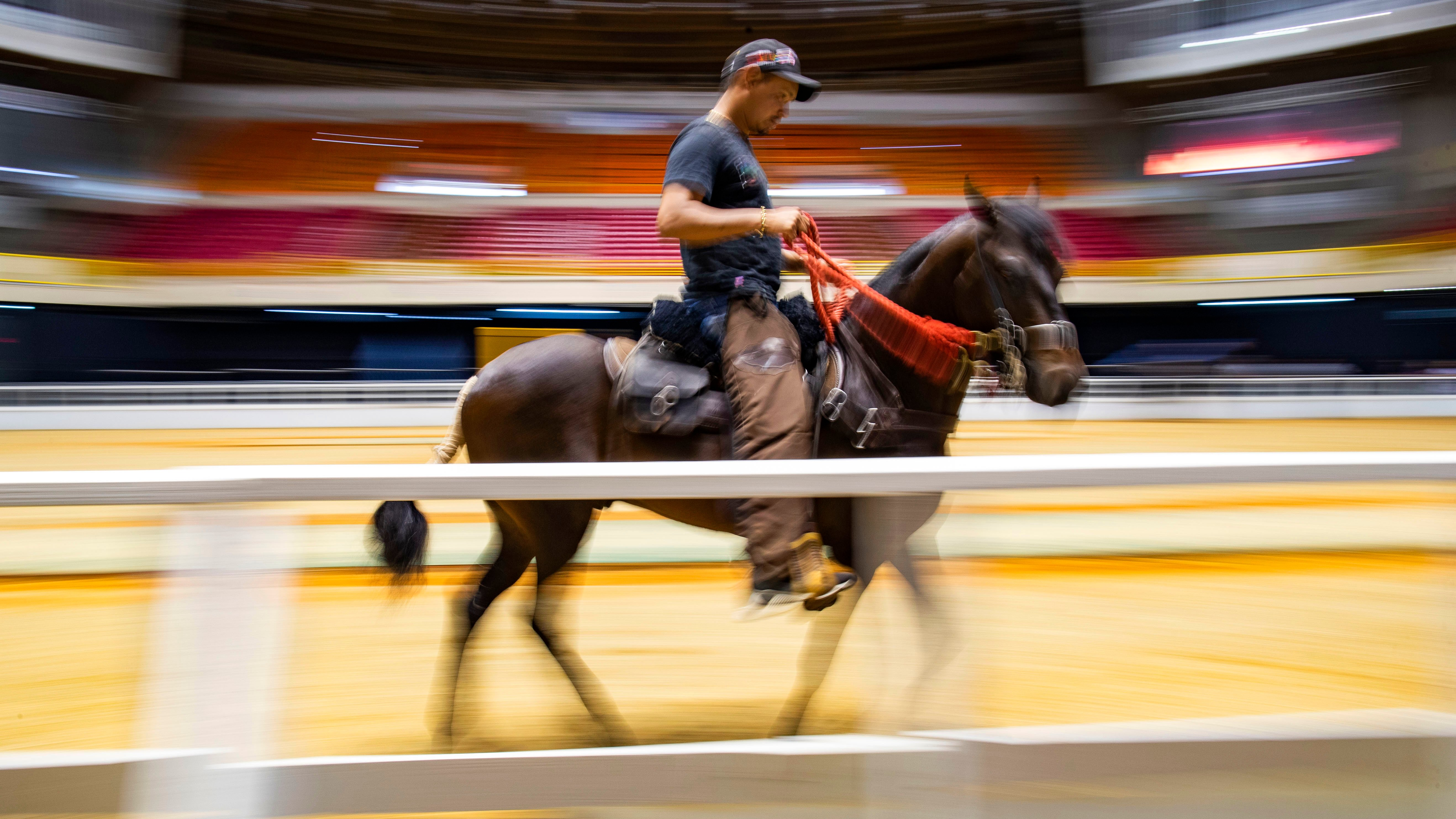 """""""Puerto Rico es una potencia de caballos de paso fino"""""""