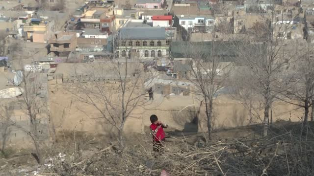 Inicio de una tregua histórica en Afganistán