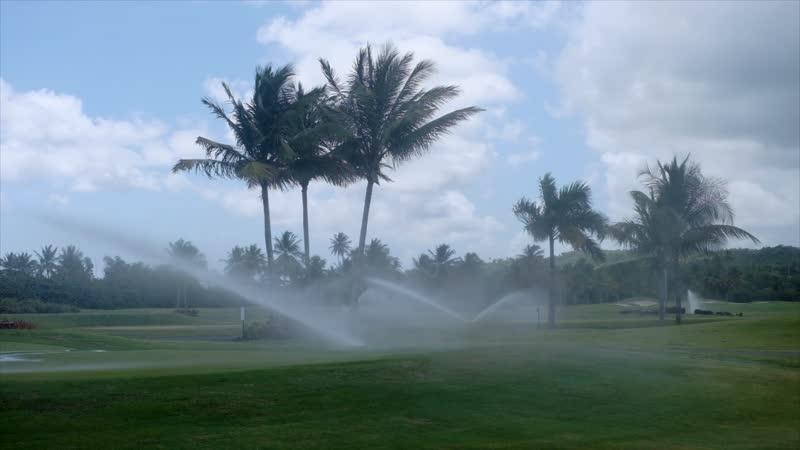 Así será la reapertura del Coco Beach Golf Club